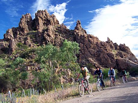 Andar los caminos por el norte neuquino en bicicleta for Viveros en neuquen